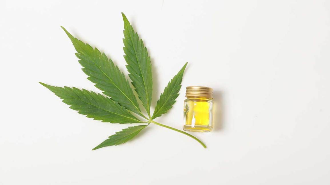 Impact of CBD Oil on the Way You Feel
